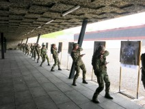 DYNAMIC Sector - During training